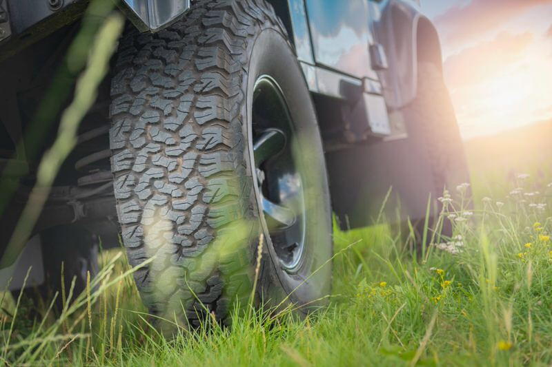 Tire in the grass