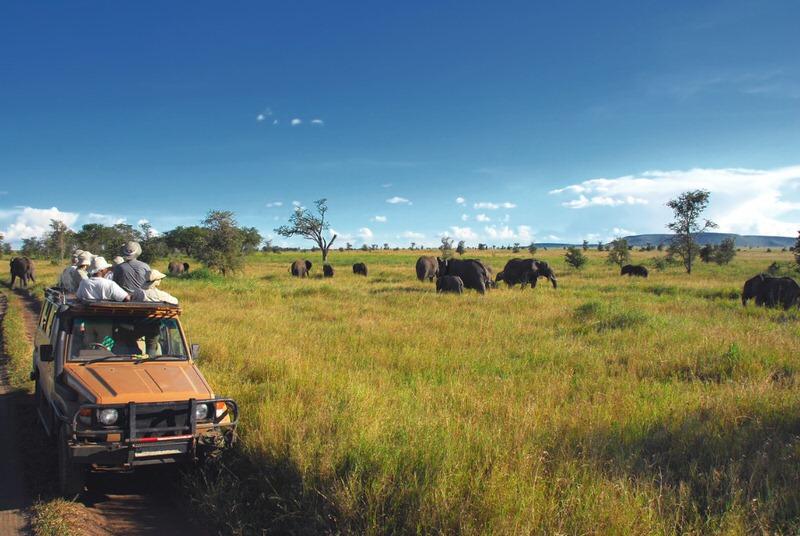 4x4 on safari